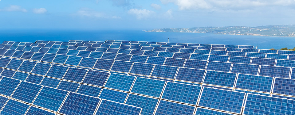Field Solar Panels Collectors Sea